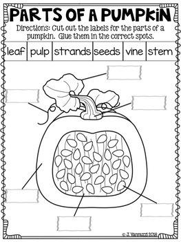 Reading Comprehension Worksheet Bundle