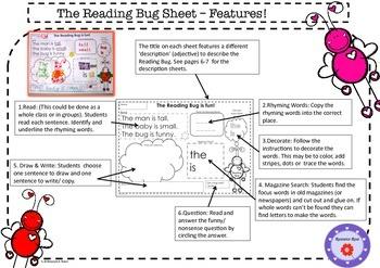 Reading & Sight Word Program. Reading Bug Theme.