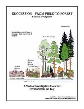 Succession - From Field to Forest