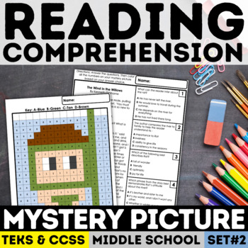 Reading Skills Mystery Picture - Swimmer