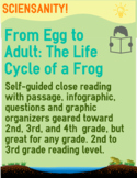 Reading Skills Passage - From Egg to Adult: The Life Cycle of a Frog