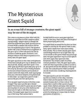 Reading Skills Passage: The Mysterious Giant Squid
