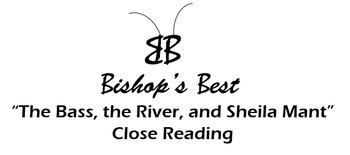 Reading Skills test: inference, indirect char, plot, theme