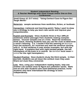 Reading Small Group/Mini-Lesson: Context Clues
