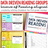 Reading Small Groups Data Binder to Support the Science of