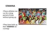 Reading Stamina PowerPoint