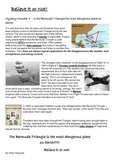 Reading Strategie - Mystery 4 - Bermuda Traiangle
