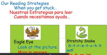 Reading Strategies-Bilingual