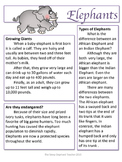 Reading Strategies: Elephant Article