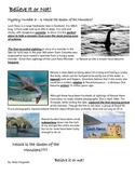 Reading Strategies- Mystery 3- The Loch Ness Monster