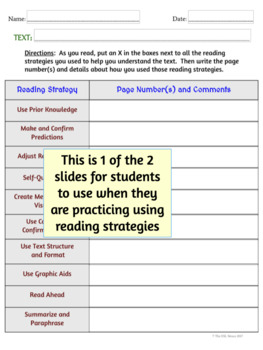 Reading Strategies Practice & Picture Dictionary, Digital Version
