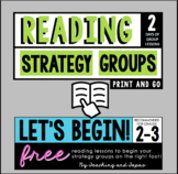 Reading Strategy Groups: FREEBIE!