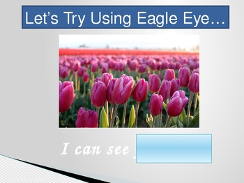 Reading Strategy - Introducing Eagle Eye
