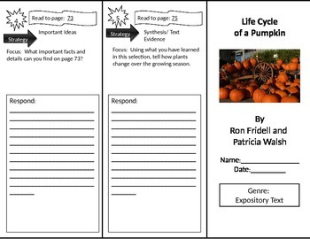 Reading Street 2nd Grade Life Cycle of a Pumpkin Trifold