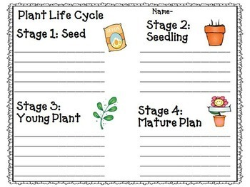 Reading Street 2nd Grade Unit 1-6 Full Year Supplemental Materials