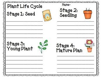Reading Street 2nd Grade Unit 4-5-6 Bundle Supplemental Materials