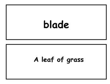 3rd grade vocabulary flash cards