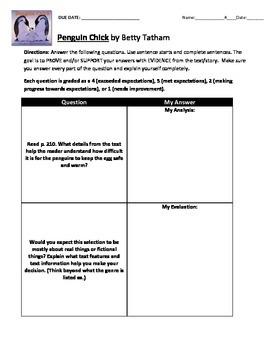 Reading Street 3rd Grade: Penguin Chick [NO PREP Comprehension Packet]