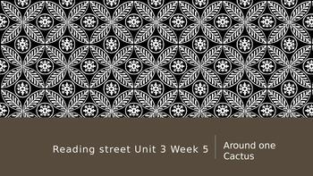 Reading Street 3rd Grade Unit 3 Lesson 5 Around One Cactus