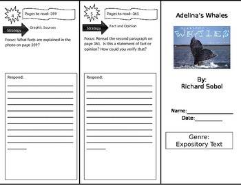 Reading Street 4th Grade Adelina's Whales