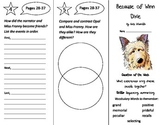 Reading Street 4th Grade Trifolds Bundle - Whole Year