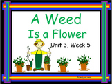 A Weed is a Flower,  PowerPoint for Whole Groups and Intervention Groups
