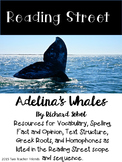 Reading Street Adelina's Whales
