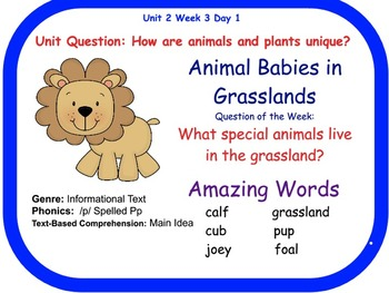 Animal Babies in Grasslands Flipchart Days 1-5 (Reading Street)