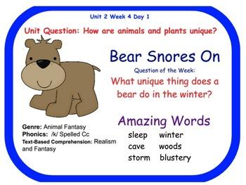 Reading Street Bear Snores On Flipchart Days 1-5
