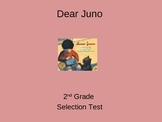"Reading Street ""Dear Juno  "" Selection Test (Turning Point)"