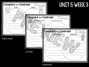 Reading Street First Grade Comprehension Worksheets Unit 5