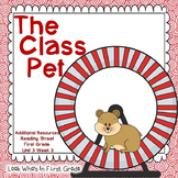Reading Street First Grade The Class Pet Additional Resources