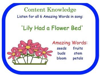 Reading Street Flowers Flipchart Day One