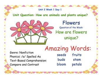 Reading Street Flowers Flipchart Days 1-5