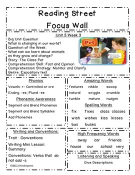 Reading Street Focus Sheets First Grade  Unit 3 Weeks 1-6