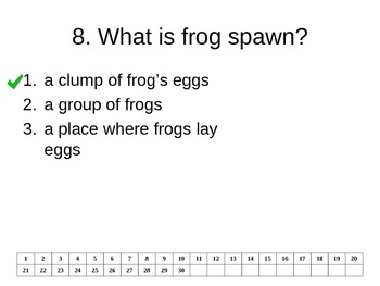 """Reading Street """"Frogs """" Selection Test (Turning Point)"""