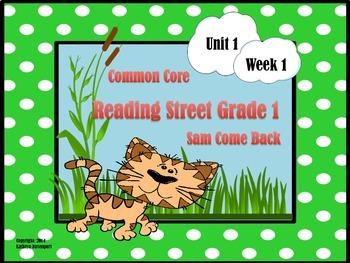 Reading Street Grade 1  Sam, Come Back Unit 1 Week 1