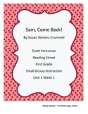 Reading Street Grade 1 Small Group Packet Unit 1 Week 1, S
