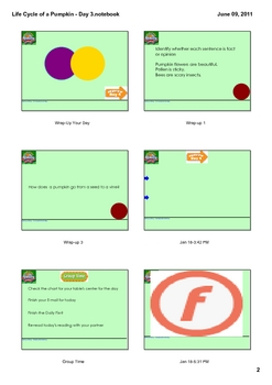 Reading Street Grade 2 Life Cycle of a Pumpkin - Day 3