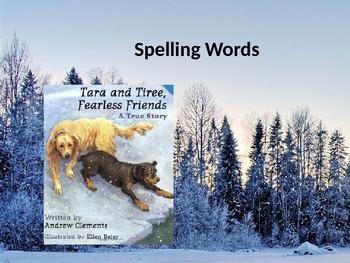 Reading Street Grade 2 Unit 2 Lesson 1 Tara and Tiree spelling words