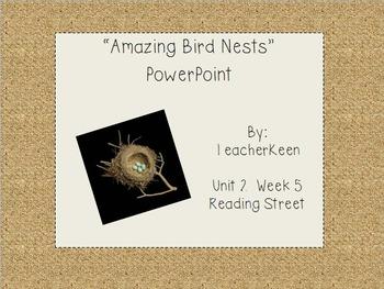 "Reading Street Grade 3 - ""Amazing Bird Nests"" Powerpoint"