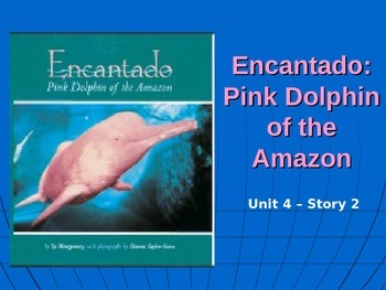 Reading Street Grade 4 Encantado: Pink Dolphin of the Amazon Spelling PowerPoint