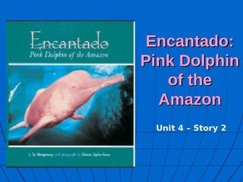 Reading Street Grade 4 Encantado: Pink Dolphin of the Amaz
