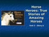 Reading Street Grade 4 Horse Heroes Spelling PowerPoint