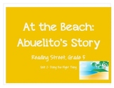 Reading Street: Grade 5: At the Beach Abuelito's Story activities-Unit 2)