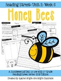 Reading Street- Honey Bees Supplemental Unit {Unit 2: Week 6}