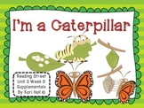 Reading Street I'm a Caterpillar Unit 3 Week 5 Differentiated first grade