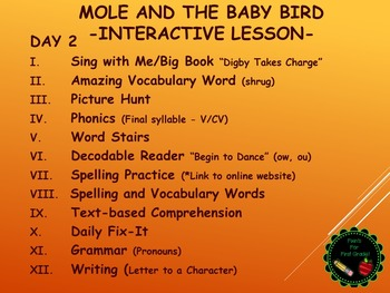 Reading Street Interactive Daily Lessons (4 days) - Mole and Baby Bird
