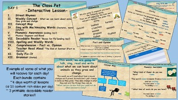 Reading Street Interactive Lessons (4 days) - The Class Pe