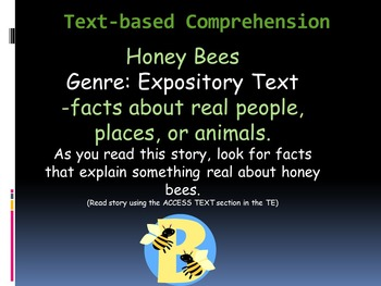 Reading Street Interactive Lessons (4 days) - Honey Bees - CUSTOMIZABLE